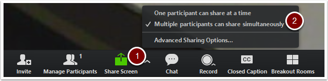Zoom Toolbar - Sharing options button