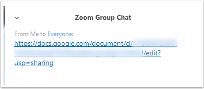 Google Doc share link sent in Zoom Group Chat