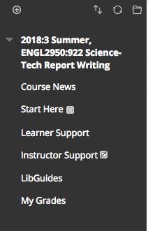 Image: Default Blackboard course menu