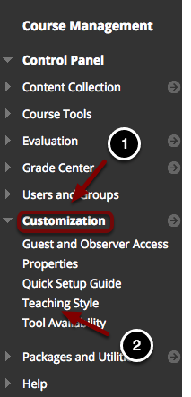 Image of the Blackboard Control Panel opened under Customization, with Teaching Style highlighted.