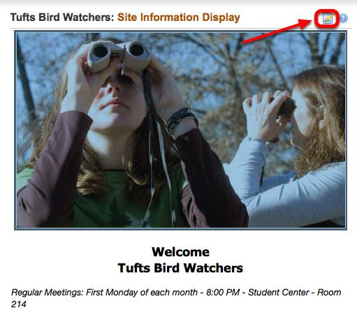 2 - Site Information Display: