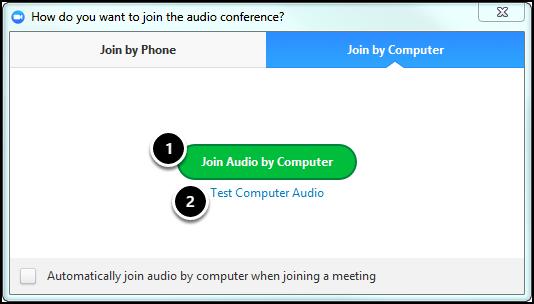 choose audio options