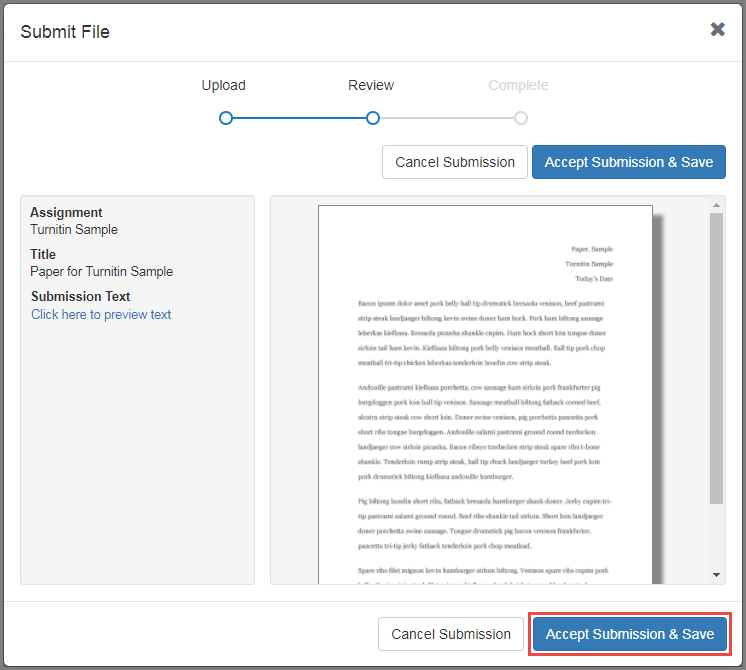 Preview your document and accept your submission