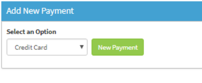 Add New Payment