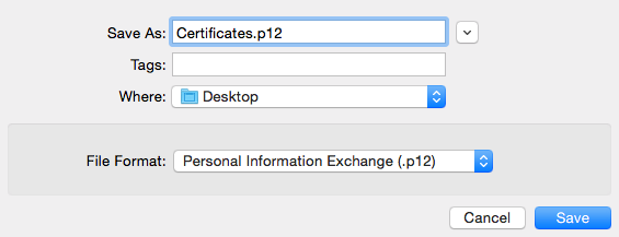 Save the file as a .p12 file on your desktop.