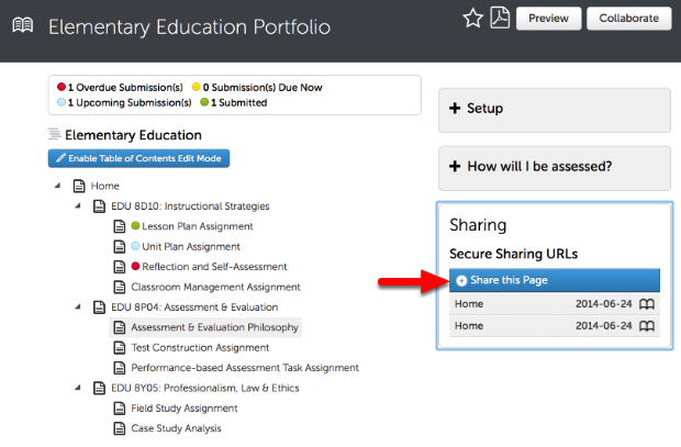 Step 3: Select the Portfolio Page