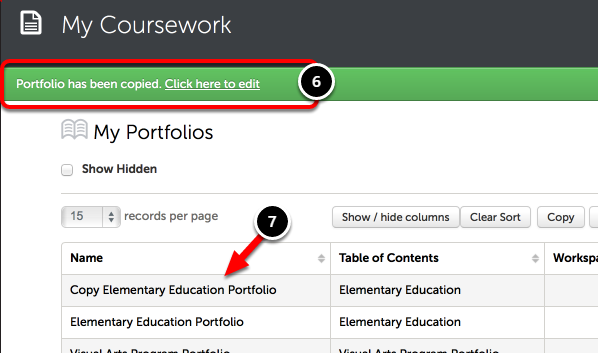 Step 4: Confirmation of Copied Portfolio