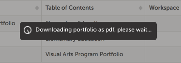 Step 3: Download Portfolio