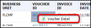 Voucher Detail pop up
