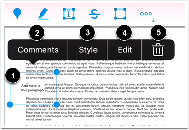 Modify Text Annotation