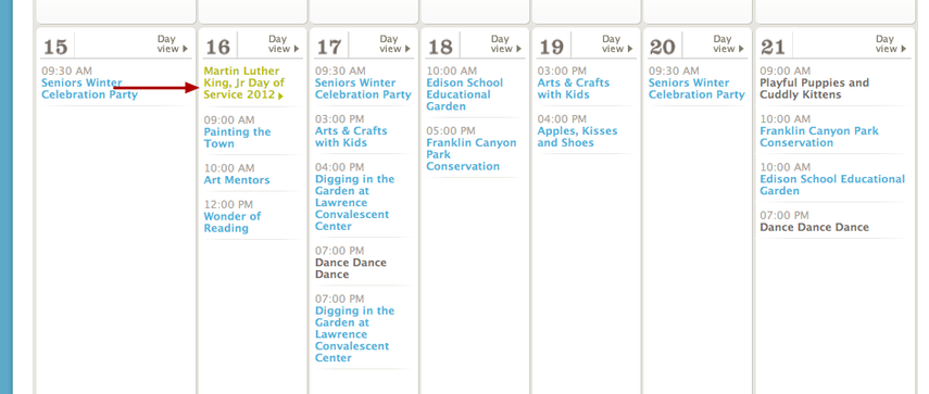How a volunteer event appears on the public site calendar.