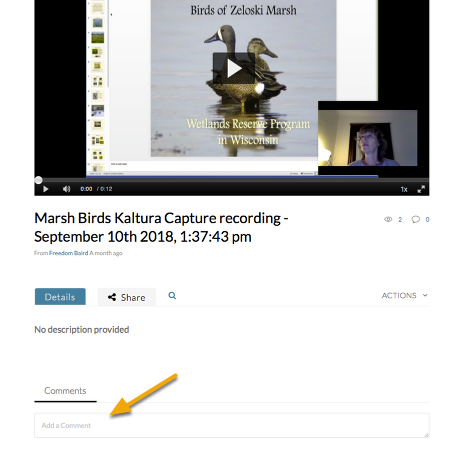 mediaspace video with comment box highlighted