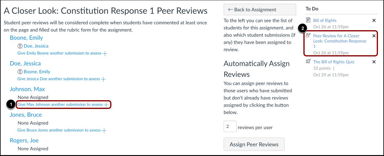 View Peer Reveiw Assignments