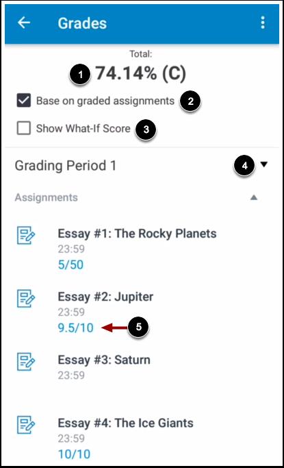 View Course Grades