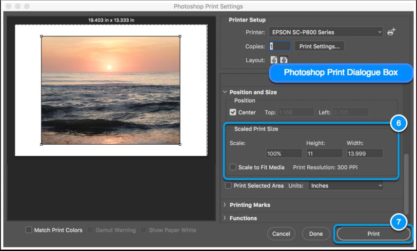 Photoshop Scaling & Print