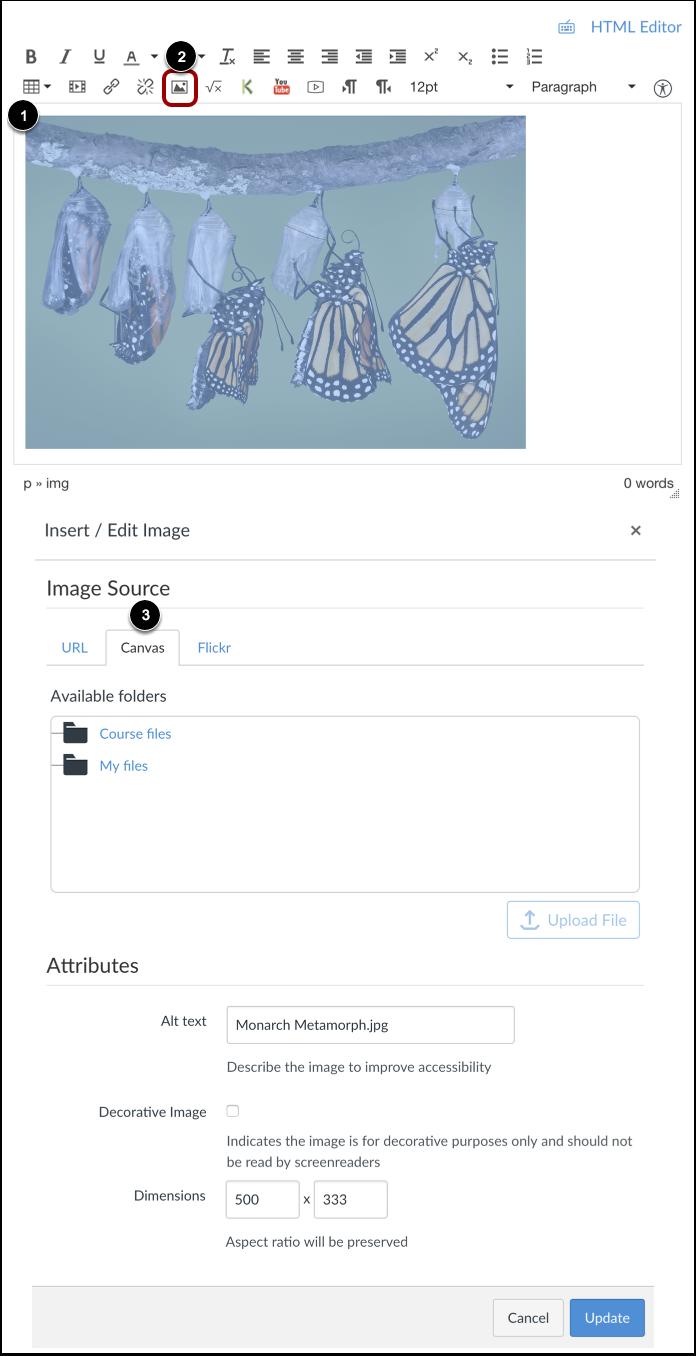 Modifier les propriétés de l'image