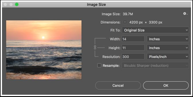 Image Size Dialogue Box