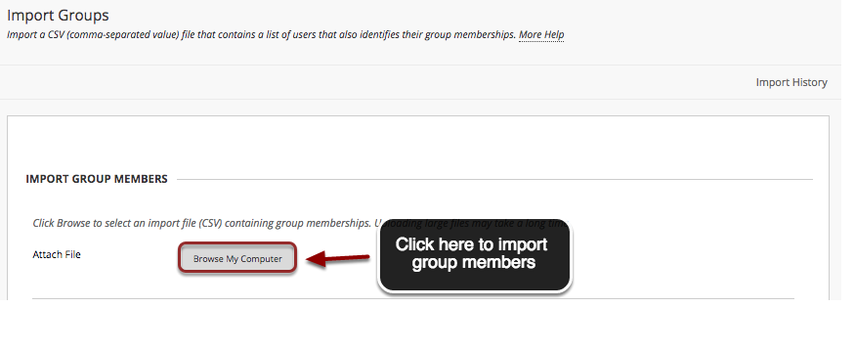 Image of the Import Group Members screen showing the Import Group Members step. Under Import Group Members step, the Browse My Computer button is highlighed in a red circle with an arrow pointing to it. A text box reads Click Here to import group members.