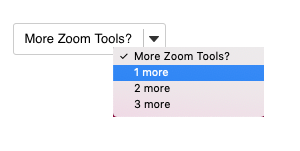 Add multiple Zoom tools to your course site.