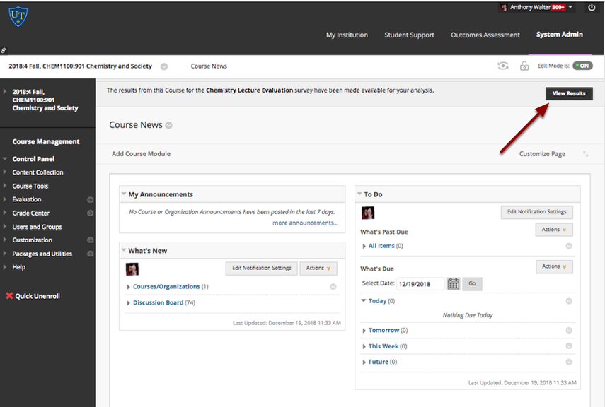 Image of a Blackboard course home page showing the View Results button for accessing Enterprise survey results.