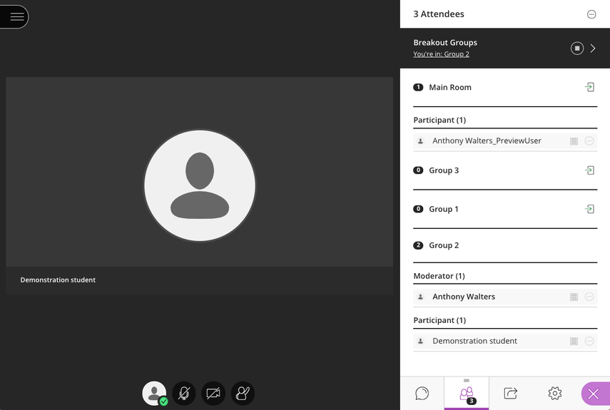 Image of a breakout group in collaborate.