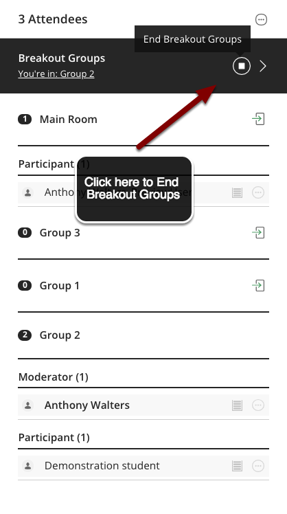 Image of the Participants list with an arrow pointing to the end breakout groups button.