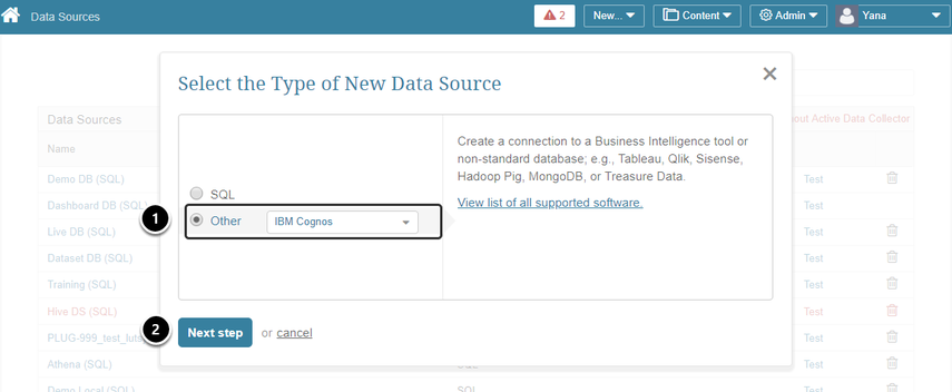 "Select ""Other"" Data Source Type and choose ""IBM Cognos"" from the drop-down list"