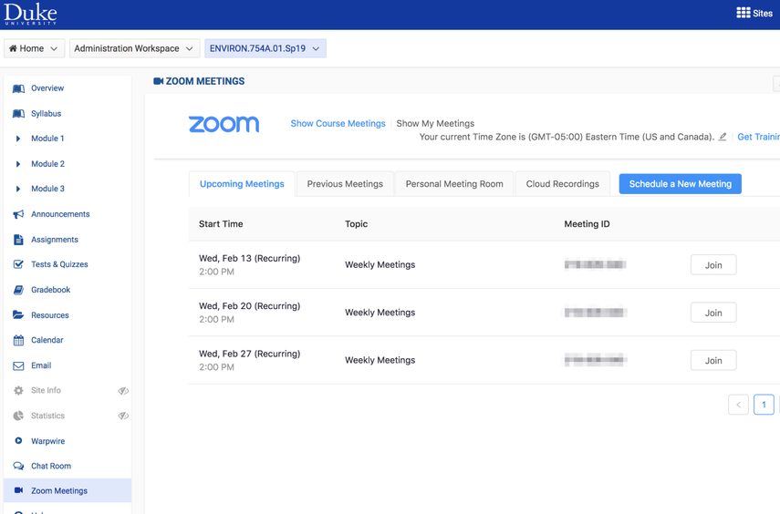 Zoom meetings interface.