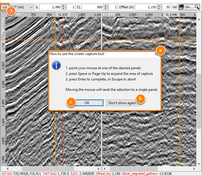 Screen capture dialog