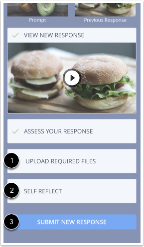 Image of the exercise page in the mobile interface with the Upload Files, Self Reflect, and Submit New Response buttons highlighted