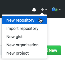 Click the + plus sign > New Repository