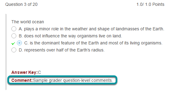 Question-level grader comments.