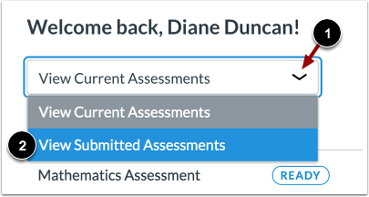 View Submitted Assessments