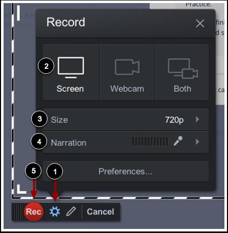 Record Screen Capture