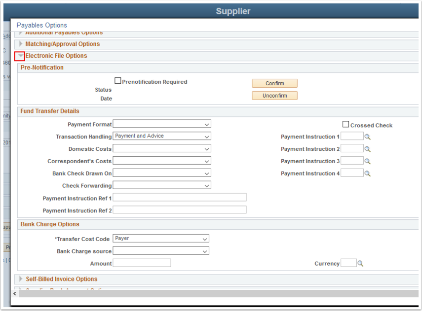 Payables Options page  - Electronic File Options