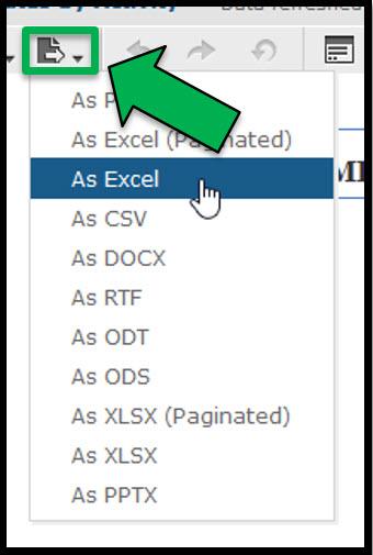 Export Report Options