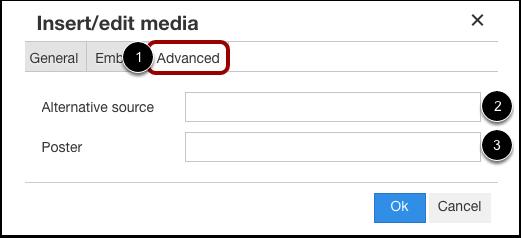 Insert Advanced Options