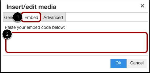 Insert Embed Code