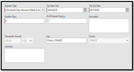 International daily allowance expense type. There are multiple required and optional fields.