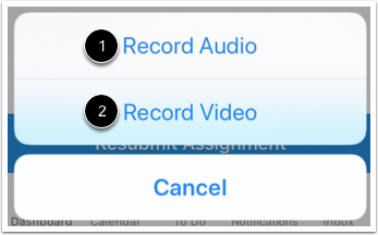 Select Recording Option