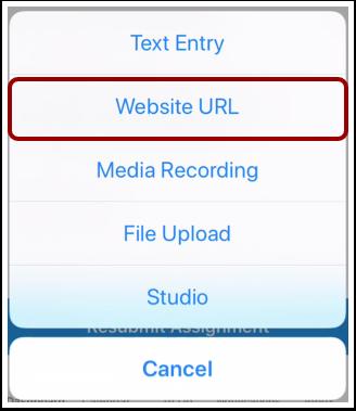 Select Website URL