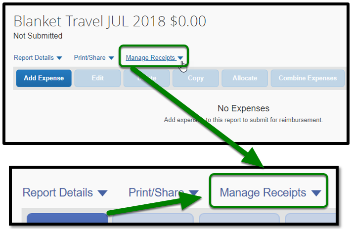 Blanket Travel Expense report. The Manage Receipts tab is zoomed in.