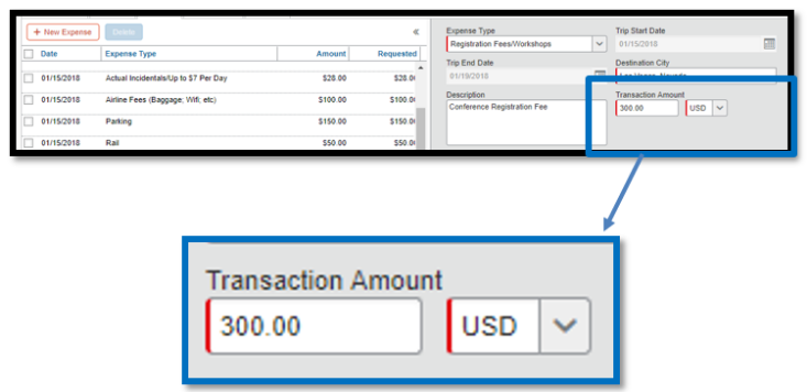Within the registration fees/workshops expense itemization, there is a zoomed in image of the transaction amount field. $300 dollars has been inputted into the field.