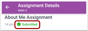 View Assignment Submission Details