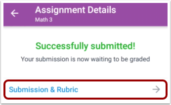 Open Submission & Rubric