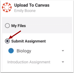 Select Submit Assignment