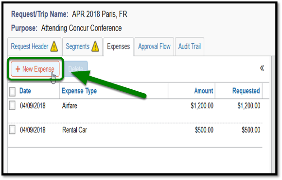 Under the Expenses tab, the New Expense button is highlighted in green, with the mouse hand hovering over it.