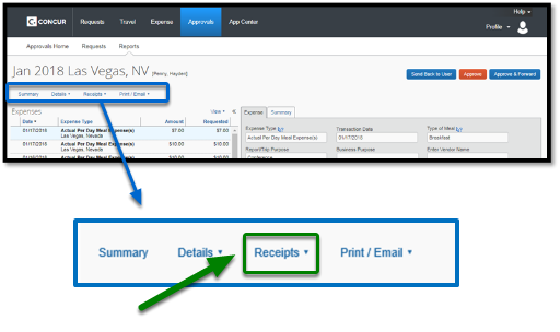 Report header. There is a zoom into the report header, and shows the summary, details, receipts, and print/email options. The receipts option is highlighted, and there is a green arrow pointing towards it.