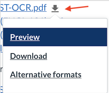 Clicking on this down arrow will surface a pull down menu inviting participants to download the original file uploaded by the instructor, or to choose from one of several alternative formats for download.