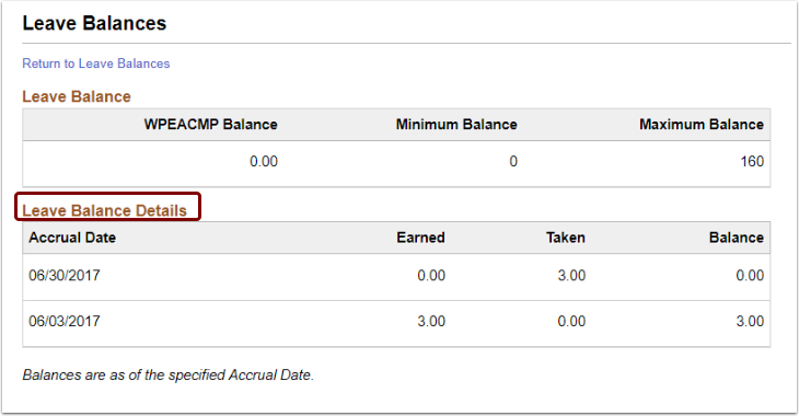 Leave Balances page, Leave Balance and Leave Balance Details sections